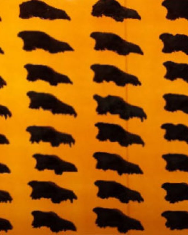 dire-wolf-skulls