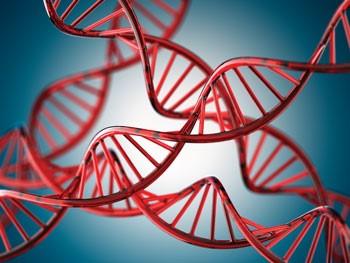 Nimeni nu știe cum structura remarcabilă a ADN-ului ar putea proveni de la procesele naturale de la materia non-vie.