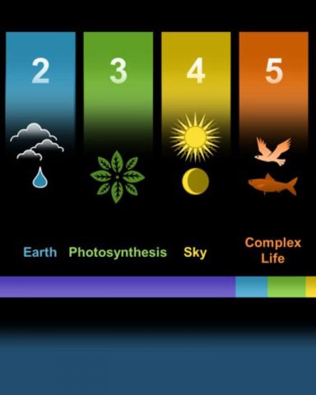 sase-zile-miliarde-ani