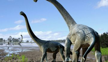 Savannasaurus-elliottorum-Travis-R-Tischler.0.png