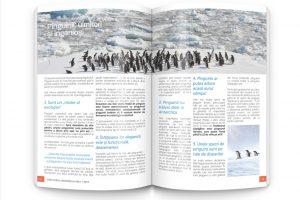 pag-62-63 copy