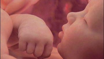 bebelus in pantece