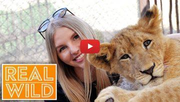 prietenii-cu-animale