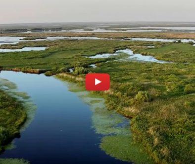 Dunarea-Amazonul-Europei