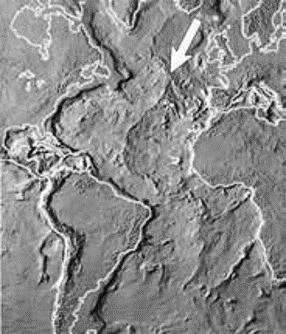 Figură 1 Coasta Atlanticului de mijloc (indicată prin săgeată), vizibilă clar pe această hartă topografică
