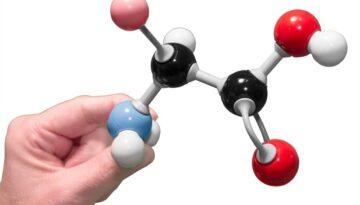 aminoacizi-creatie-recenta3