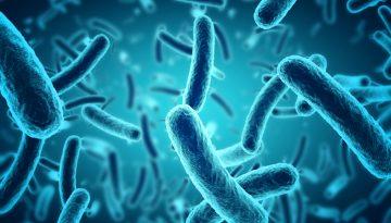 bacterii-milioane-ani