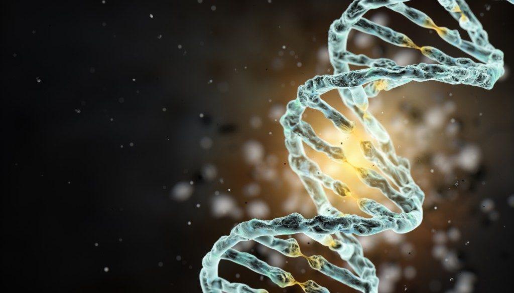 cromozomul-adam