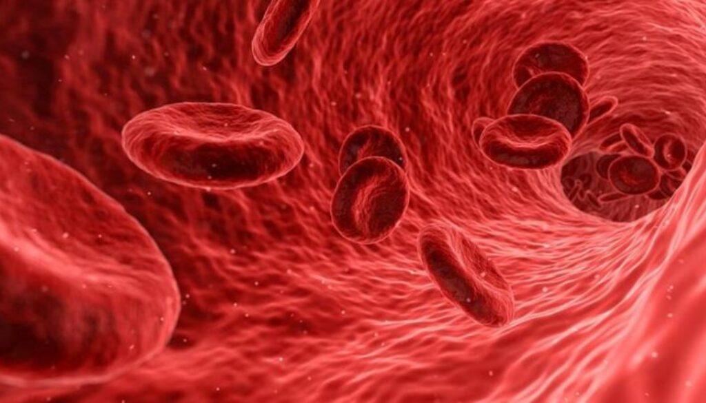 hemoglobina-846x414