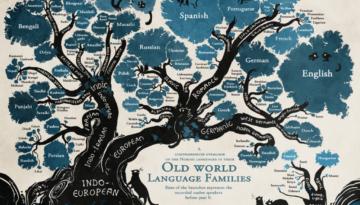 lingvistica-turn-babel2