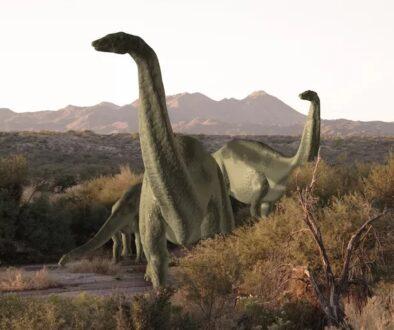 dinozauri-ingropati-impreuna3