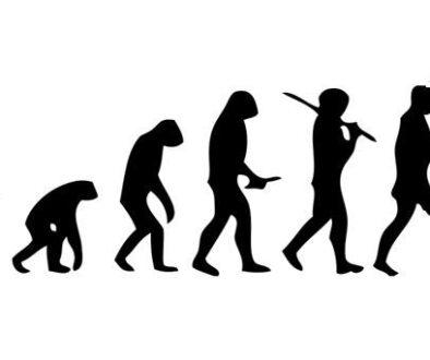 mecanism-evolutie1
